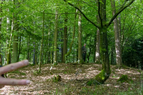 Hügelgrab 3 bei Illenschwang