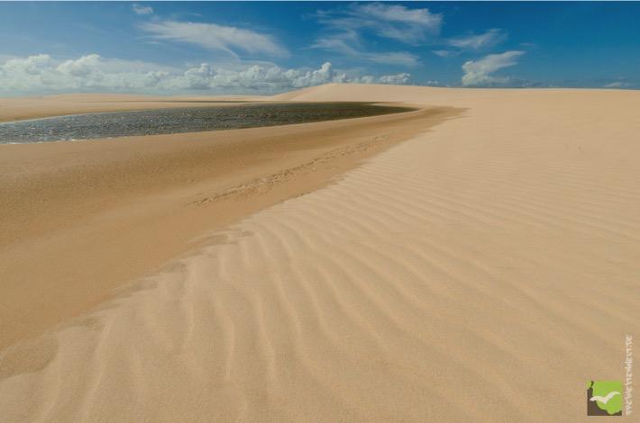 Blich auf die ersten Dünen
