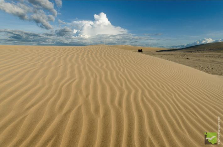Fahrt entlang der Dünen