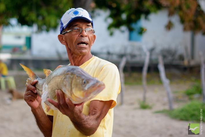 Fischverkäufer in der Stadt