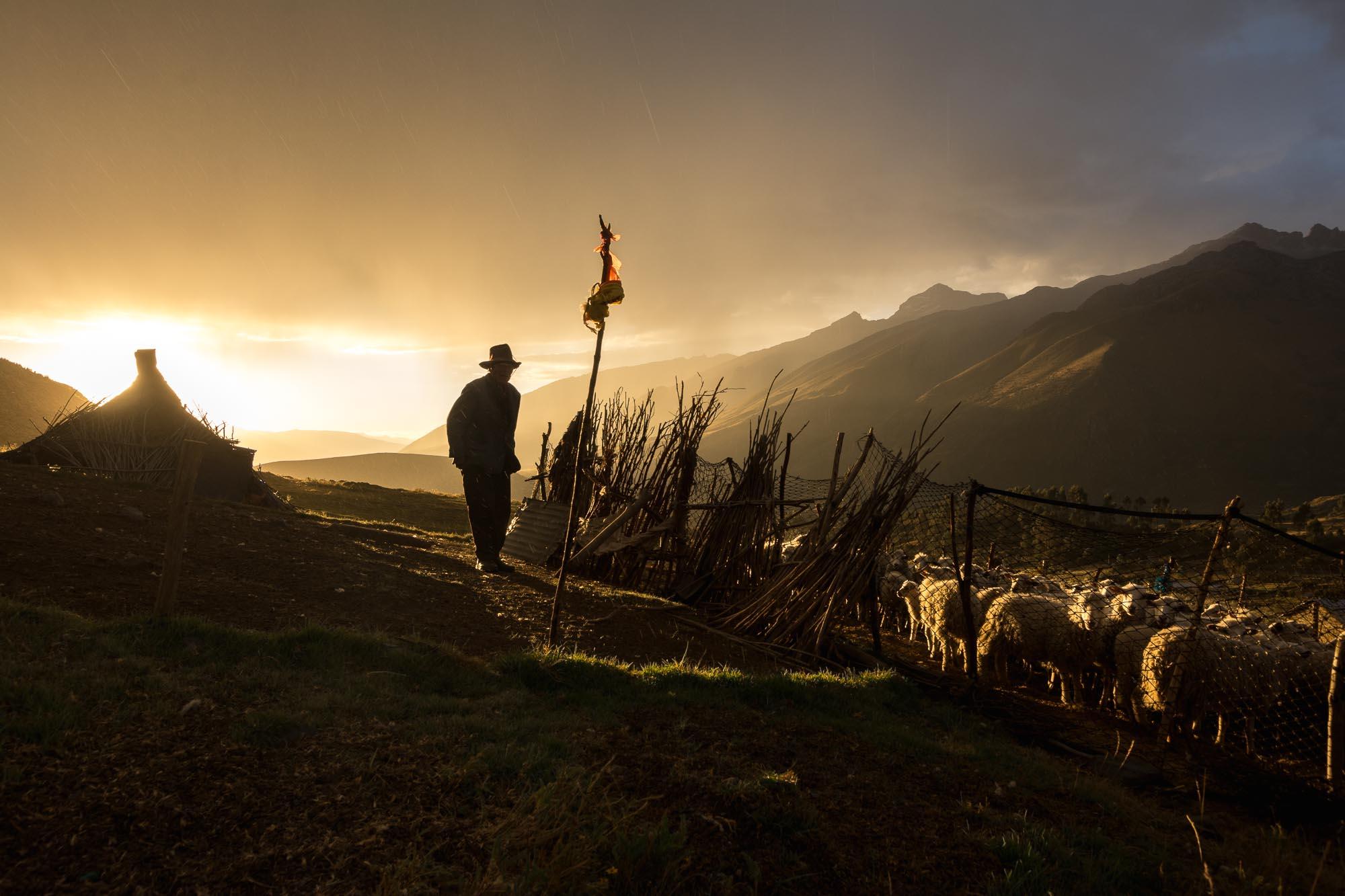 Shadow Farmer - Peru