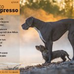 Fotograf im Fokus – Artikel im Fotoespresso