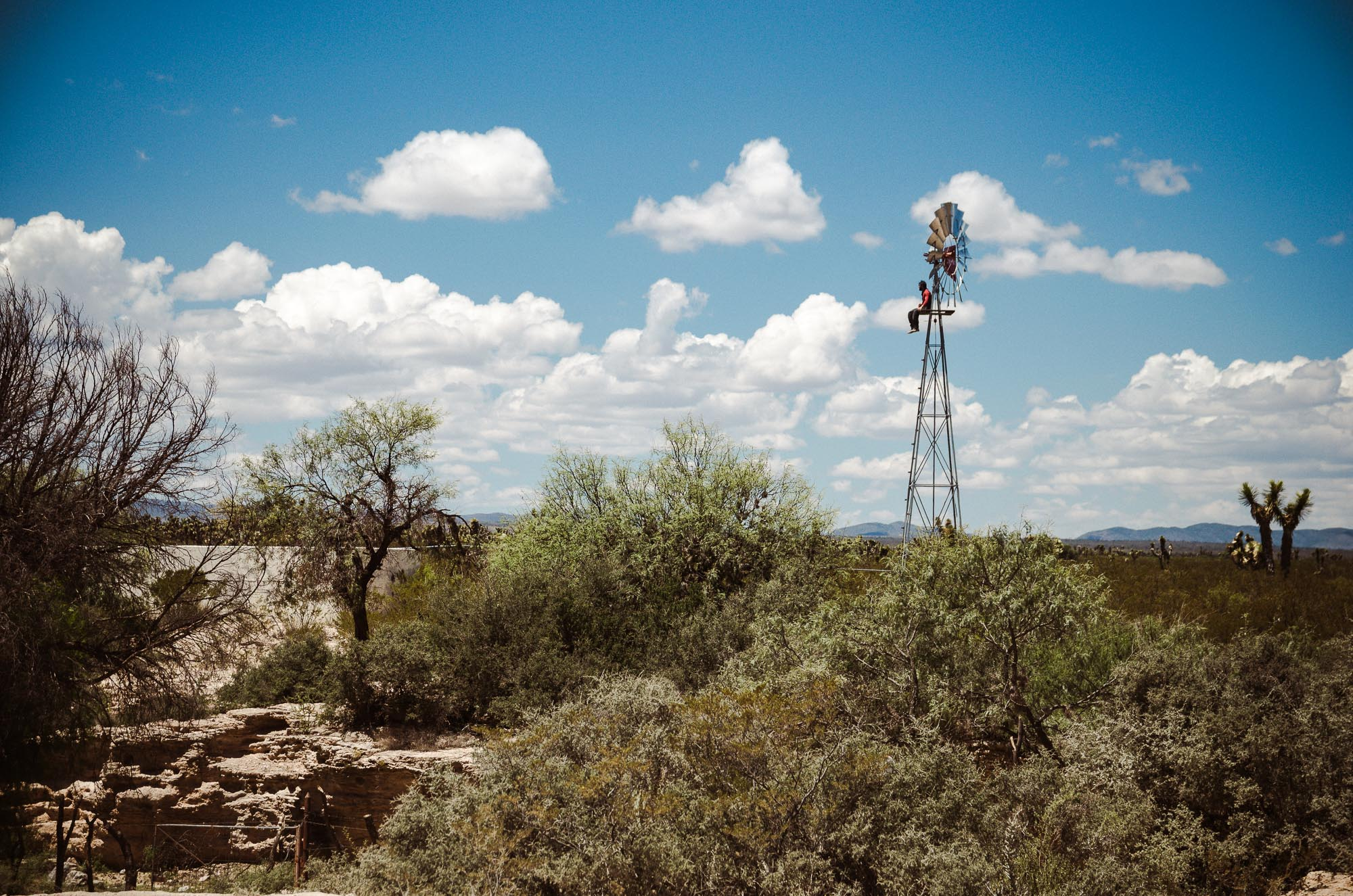 Roadtrip Wüste